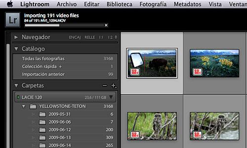 Importando los vídeos al catálogo.