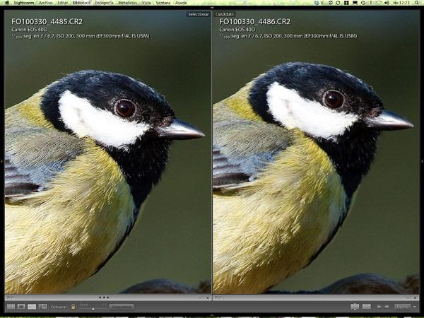 Vista comparación (C).