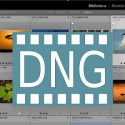 Qué es el formato DNG y como utilizarlo en Lightroom