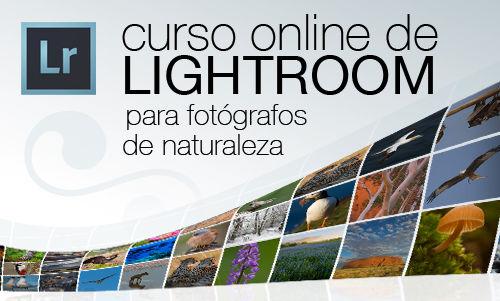 cabecera_curso_lightroomNAT-500