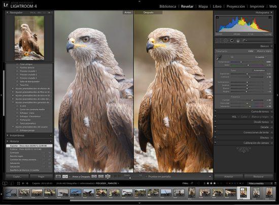 Pantalla de Lightroom 4 en el módulo de revelado mostrando una imagen antes y después del ajuste